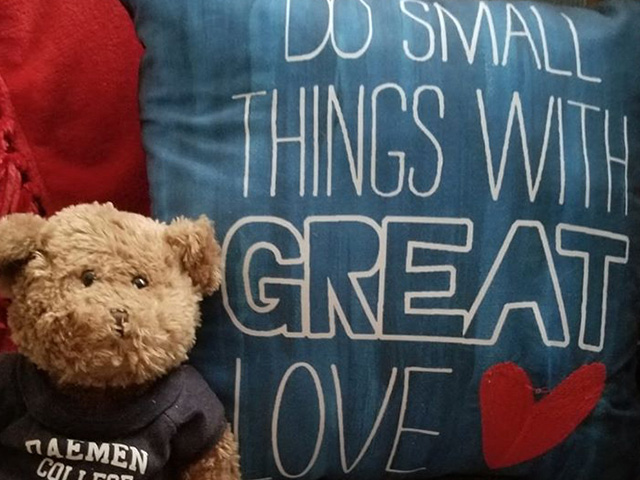 small bear in Daemen t-shirt in front of a pillow that says Do Small Things With Great Love