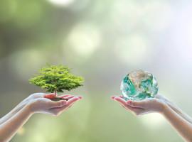 Environmental Summit